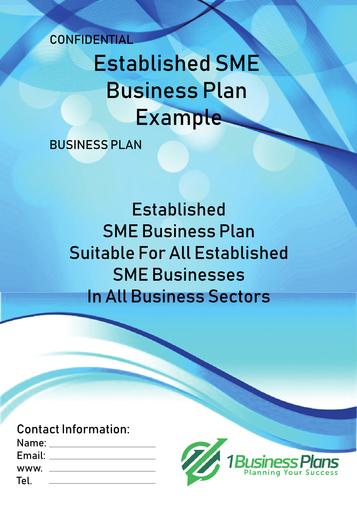 SME Established Business Plan Example