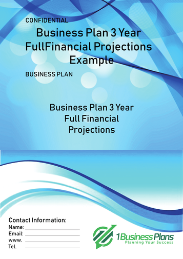 3 Year Financial Projections Example